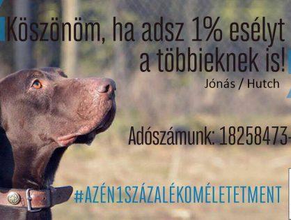 Adó 1% - Életet ment! - Kovács Patrícia, Gusztos Péter és Jónás/ex-Hutch