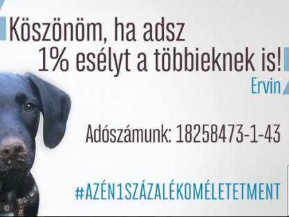 Adó 1% - Életet ment! - Urbanovits Krisztina és Ervin